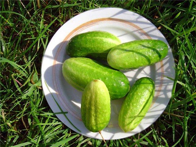 диетическое питание при аллергии на солнце